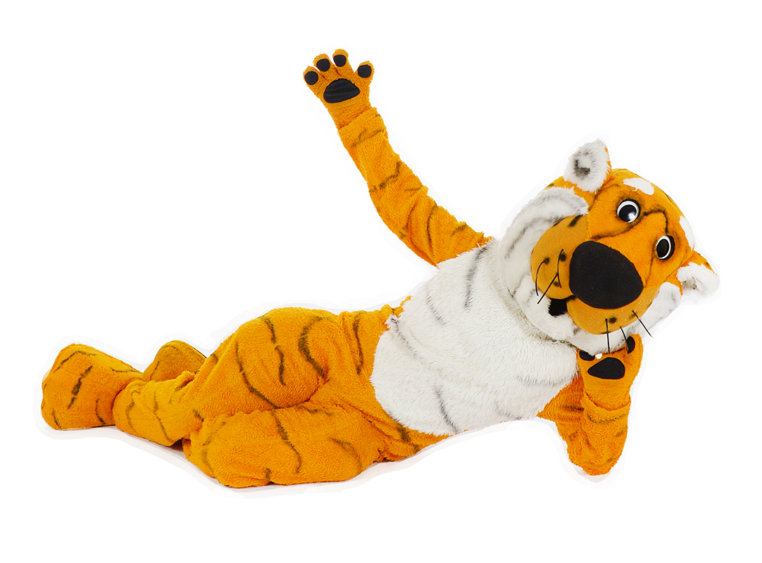 Truman the Tiger lays on his side holding his head up with one paw and he holds his other arm up in the air